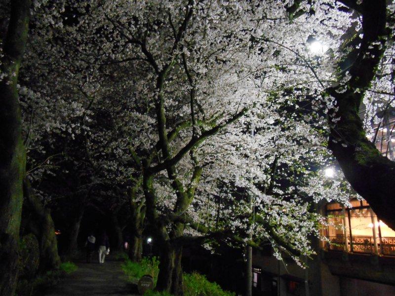 야간 조명은 21시 30분에 끝난다. 하지만 여전히 아름다워 보인다.