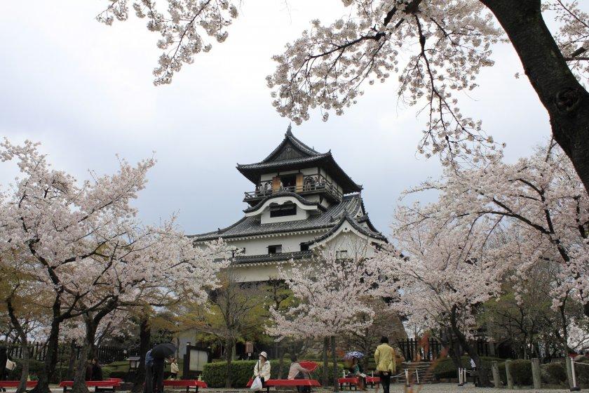 Inuyama Castle งดงามเหมือนในภาพที่เคยได้เห็นไม่มีผิด