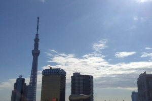 นอกจากนั้น คุณสามารถขึ้นลิฟต์ไปชั้น 8 จะมีจุดชมวิวที่สวยงามอยู่ โดยคุณสามารถมองเห็น Landmark ที่สำคัญคือ Tokyo Skytree แม้กระทั่งตึกรูปร่างประหลาดอาซาฮีได้อย่างชัดเจนทีเดียว