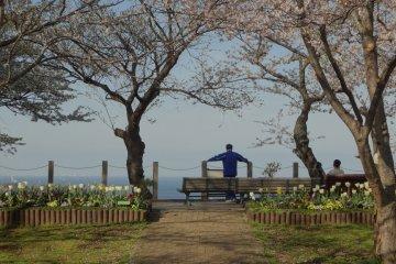 Memorial of the Blue-eyed Samurai