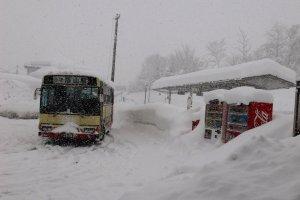 รถบัสจากสถานีโทการิ โนซาวะ ออนเซ็นพาไปส่งถึงป้ายนากาโอะในเวลาประมาณ 15 นาที