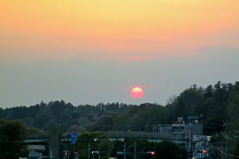偕楽園越しに見る、沈む夕陽