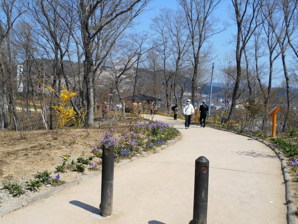 It's an easy walk to the hilltop where Funaoka Castle Park is located