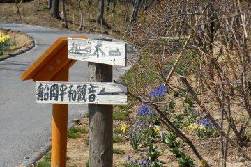 왼쪽에는 후나오카 여신의 동상이 있고, 오른쪽에는 전나무가 남아 있다