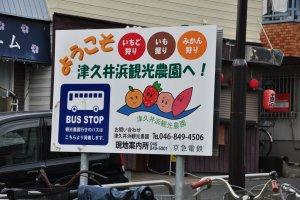 For Tsuikuihama Farms