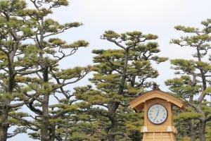 Ninomaru Park ก่อนทางเข้าปราสาท