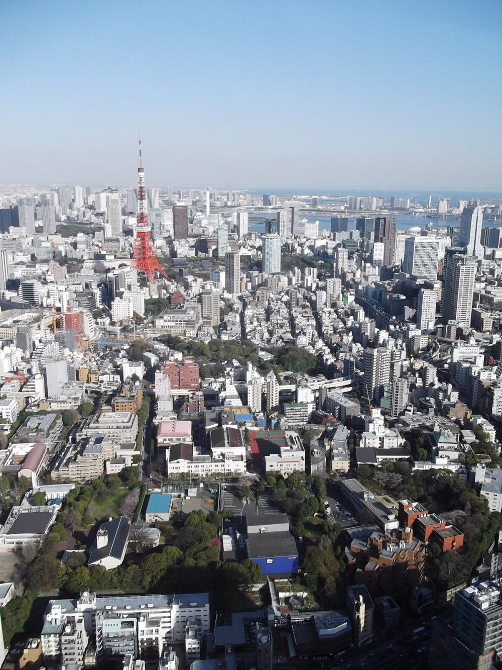 If you go up Tokyo Tower, you can't see it, but from here you can!