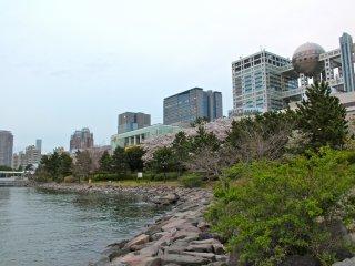 Công viên có một vịnh nhỏ yên tĩnh được bao quanh bởi đá, cây bụi theo mùa và cảnh quan của các cấu trúc Odaiba tương lai