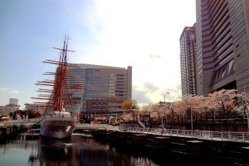 일본-마루 항해선