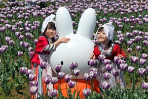 """Traditional """"Dutch Maid"""" costumes are available to all visitors, big or small, so you can play dress-up and take photographs with the beautiful tulips and inflatable bunnies in the field."""