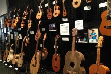 <p>Part of the extensive musical instrument collection</p>