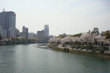 Riverbanks of Hiroshima Peace Park