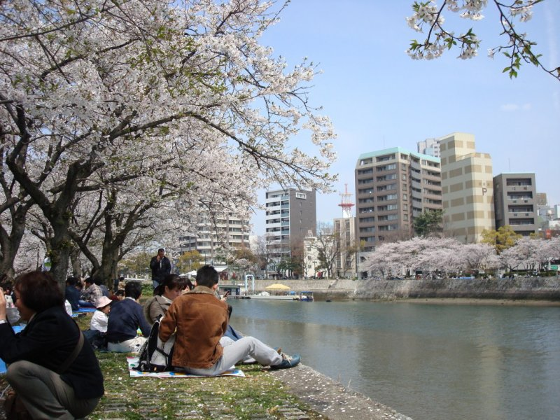 Picnickers enjoying a fine spring afternoon