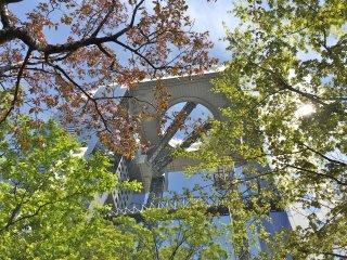 Adjacent to the Umeda Sky Building is a small garden that blooms cherry blossoms in April. You can also find a small waterfall and Japanese bridge here.
