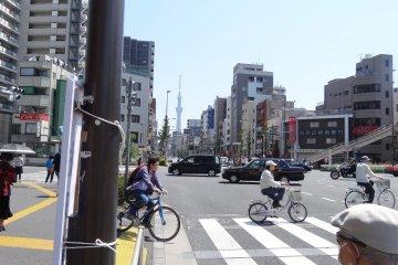 ปั่นจักรยานชมป่าคอนกรีตกลางโตเกียว