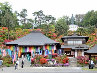 To the left of the main hall is a building where souvenirs and snacks are sold. Try one of the tasty ice cream bars.