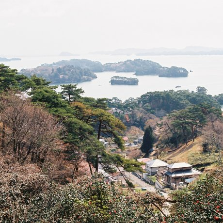 Matsushima Bay in the Spring