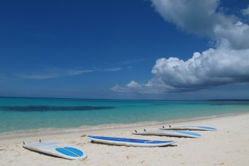<p>Setting up for a paddleboard session.</p>