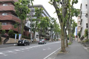 ถนนทางเดิน