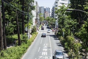 Streets of Kichijoji.