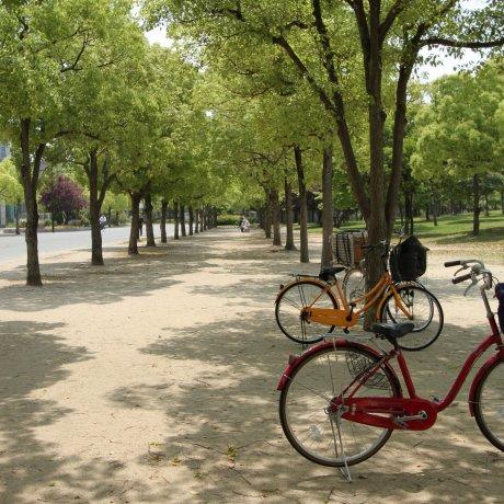 Parc Commémoratif Tsurumi Ryokuchi
