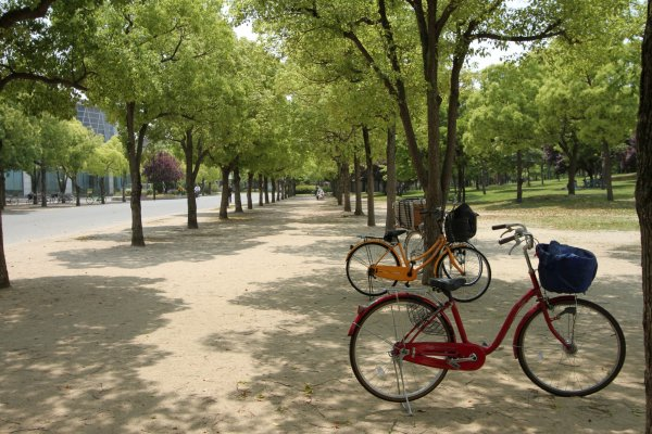 Température idéale pour faire du vélo
