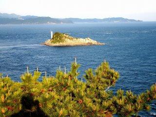 Pohon pinus dan Pulau Tobi (Skip Island) dilihat dari tempat observasi