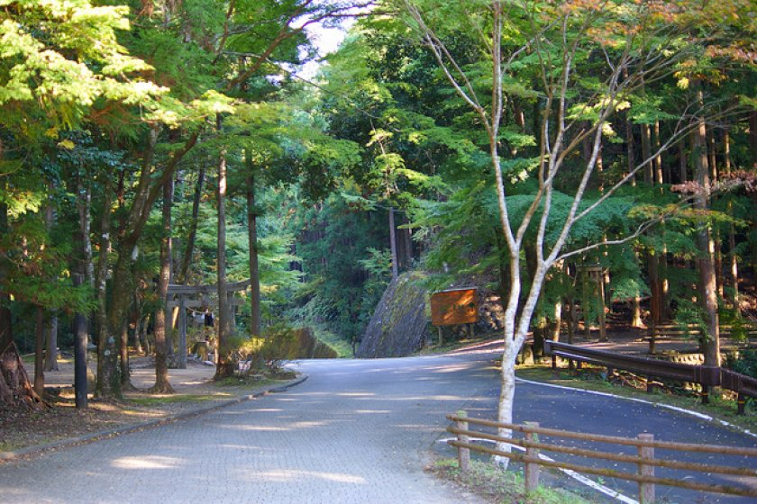 There\'s something special about the Old Kumano Road.