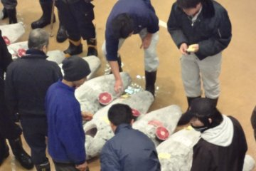 <p>Misaki Fish Market</p>