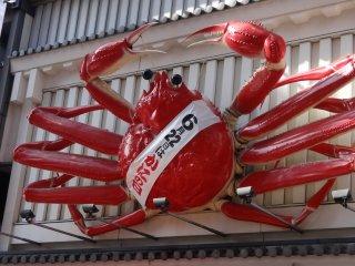ปูอีกตัวหนึ่งของร้าน Kani Doraku มีความยาวหกเมตรครึ่ง