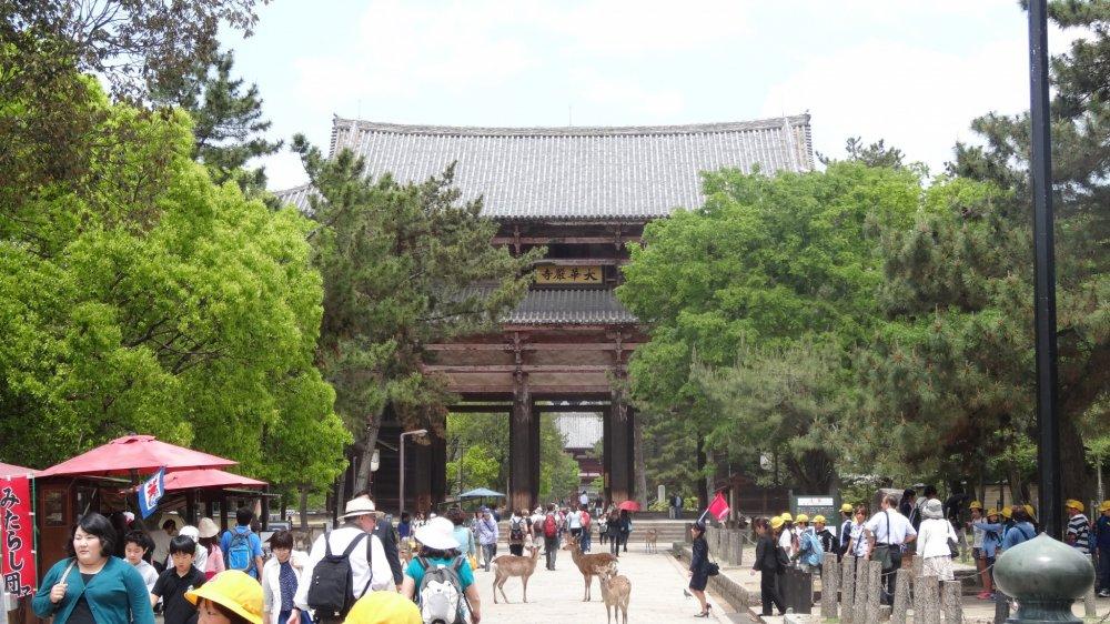ประตูขนาดใหญ่ที่มีชื่อว่า นันได-มอน (Nandai-mon) เป็นสถาปัตยกรรมจากศตวรรษที่ 8 เพียงชิ้นเดียวที่หลงเหลืออยู่