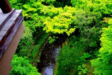 <p>Looking down from the covered bridge</p>