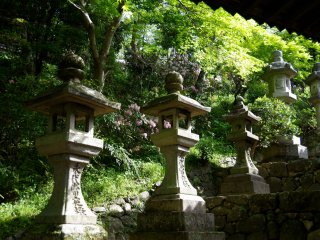 Stone lanterns along the steps