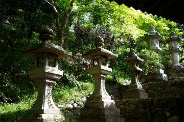 <p>Stone lanterns along the steps</p>