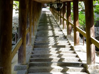 Roofed stairs have 399 steps in total