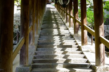 <p>Roofed stairs have 399 steps in total</p>