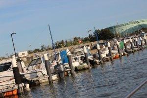 河岸の係留の方が費用は割高である。年間20万円前後