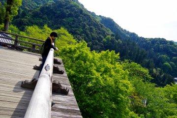 <p>Edge of the terrace</p>