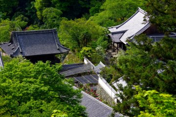 <p>Temple buildings looking down from the terrace</p>