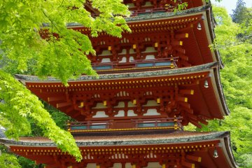 <p>Five-story pagoda standing over the main hall</p>