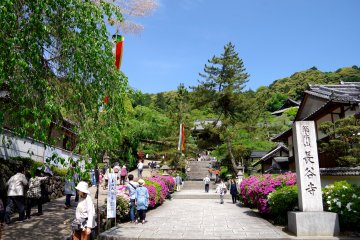<p>Approach of Hase-dera Temple</p>
