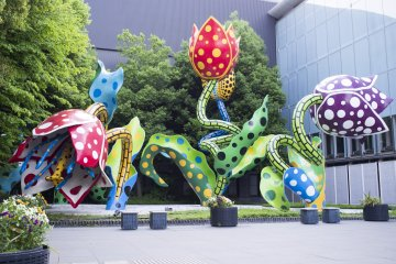 <p>The polka-dotted flower installation of world famous Japanese artist Yayoi&nbsp;Kusama, at the Matsumoto City Museum of Art</p>