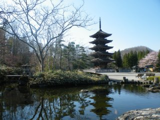 鯉の泳ぐ池に映り込む五重塔