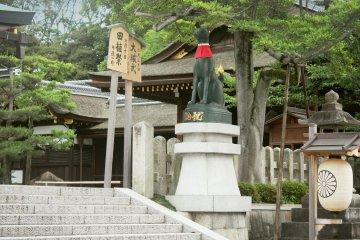 <p>Inari watching over the shrine.&nbsp;</p>