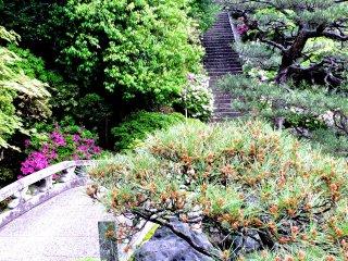 Le pont de pierre et des marches conduisant à la maison de thé surplombant le jardin