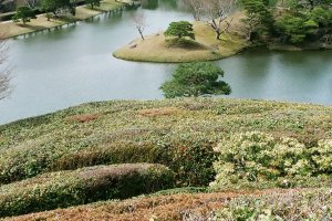 Beautiful landscaped scenery at Shugakuin