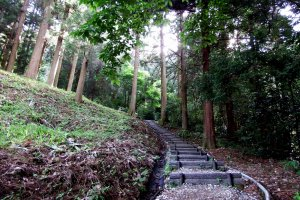 You have to walk up, up, up into the woods to reach the cemetery of the Fukui Matsudaira Clan