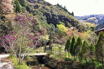 Getting Lost at Wakamiya Onsen