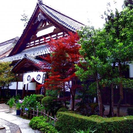 Beauty of Daian-zenji Temple, Fukui