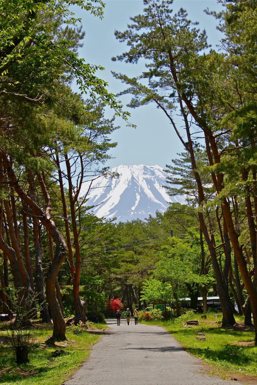 Le Mont Fuji vu du camping, au mois de mai. Quel paysage magnifique !